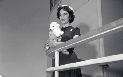 Ein Hauch von Hollywood: Exklusive Elizabeth Taylor Ausstellung auf der Queen Mary 2