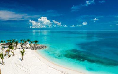 MSC Cruises präsentiert neue Angebote, die Gäste auf Ocean Cay MSC Marine Reserve ab November erwarten